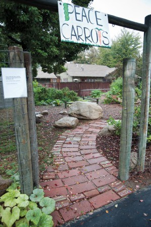 Following the donor brick entrance path, gardeners at the Church of the Brethren are reminded of early sponsors who sold personalized bricks to launch the project. The bricks were placed in the pathway located in the community garden's main entrance. / photo by Nicholas Mitzenmacher