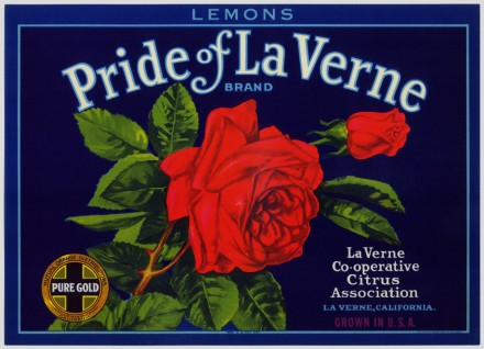 "Creating an image to last generations, the red rose depicts the La Verne Cooperative Citrus Association's ""pure gold"" standard. Used as a symbol for its very best, high grade fruit, this label graced superior crates of oranges and lemons sent around the world."