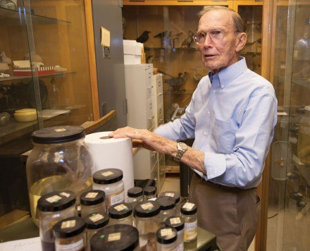 Dr. Robert Neher, longtime curator of the Jaeger Museum and chairman of the Natural Science Division, sorts jars of animal samples. Neher retires this year, leaving the future of the museum uncertain. / photo by Hunter Cole