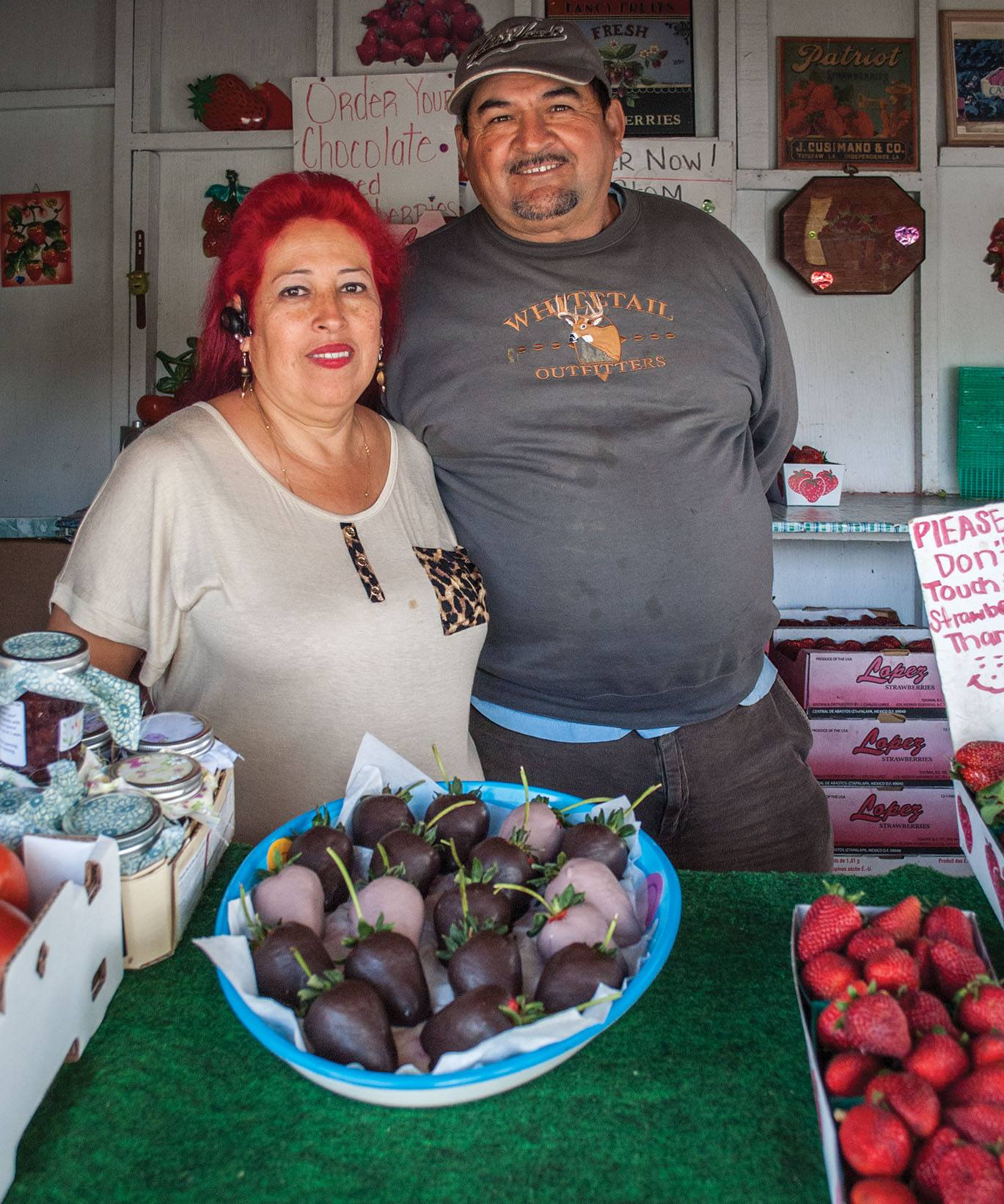 Strawberries: A family's fight for success