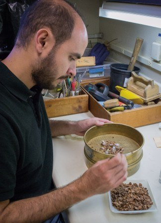Manuel Lujan, a student from Claremont Graduate University, volunteers at the Rancho Santa Ana Botanic Garden in the Seed Conservation Program. Lujan is manually separating seeds from plant debris, a process that can take a few hours. After being separated, the seeds are allowed to dry for two days before being stored and frozen for the future. / photo by Jasmin Miranda