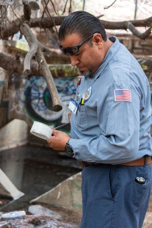 Hendricks Peña, Vector control specialist at the San Gabriel Valley Mosquito and Vector Control District, samples the water for mosquito larva on a trail in La Verne's Los Encinos Park. / photo by Claudia Ceja