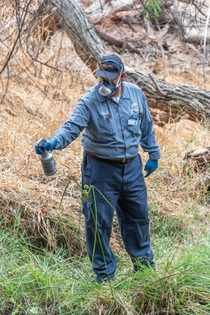 Hendricks Peña, Vector control specialist from the San Gabriel Valley Mosquito and Vector Control District uses targeted pesticides to reduce mosquito populations in this water source in Los Encinos Park in La Verne.  / photo by Claudia Ceja