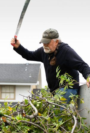 Tree trimmer by necessity, Chris Toovey says he finds creative expression in the strategic management of excess branches. / photo by Natasha Brennan