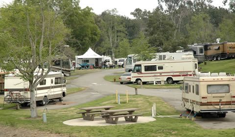 Turtles of technology: Campers at Bonelli Park's East Shore RV Park take their homes with them. / photo by Jenna Campbell