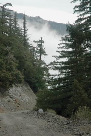 The mountains seemingly meet the sky on the San Antonio Falls trail in Mount Baldy. / photo by Reina Santa Cruz