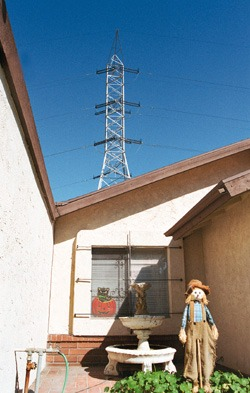 """Anna Marie McGuire has been a resident of 1545 Diane Drive for 28 years. She says that the """"ugly"""" power towers have not caused her any problems and have helped her maintain privacy around her home. / photo by Kati Kelly"""